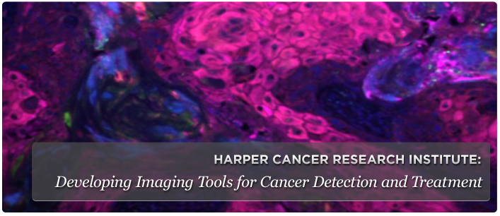 Developing Imaging Tools for Cancer Detection and Treatment